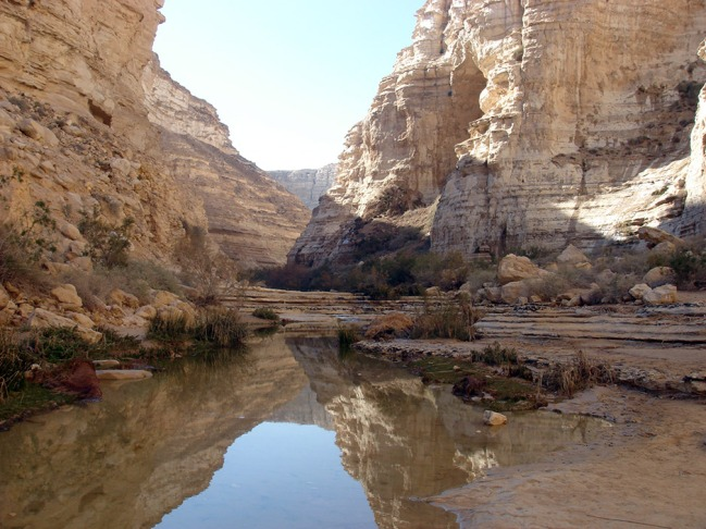 oasis-entrance-in-the-negev